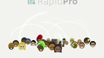 12376 NYHQ Rapid Pro Animation MIX HD 24FPS