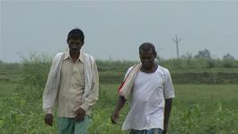 11048 India Defecation Free Village INT HD PAL